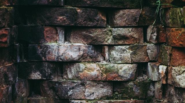 pexels-photo-692063